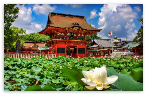 Iga Hachiman Shrine And Lotuses HD wallpaper for Wide 16:10 5:3 Widescreen WHXGA WQXGA WUXGA WXGA WGA ; HD 16:9 High Definition WQHD QWXGA 1080p 900p 720p QHD nHD ; UHD 16:9 WQHD QWXGA 1080p 900p 720p QHD nHD ; Standard 4:3 5:4 3:2 Fullscreen UXGA XGA SVGA QSXGA SXGA DVGA HVGA HQVGA devices ( Apple PowerBook G4 iPhone 4 3G 3GS iPod Touch ) ; Tablet 1:1 ; iPad 1/2/Mini ; Mobile 4:3 5:3 3:2 16:9 5:4 - UXGA XGA SVGA WGA DVGA HVGA HQVGA devices ( Apple PowerBook G4 iPhone 4 3G 3GS iPod Touch ) WQHD QWXGA 1080p 900p 720p QHD nHD QSXGA SXGA ;