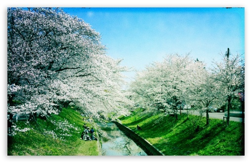 Iga River, Spring HD wallpaper for Standard 4:3 5:4 Fullscreen UXGA XGA SVGA QSXGA SXGA ; Wide 16:10 5:3 Widescreen WHXGA WQXGA WUXGA WXGA WGA ; HD 16:9 High Definition WQHD QWXGA 1080p 900p 720p QHD nHD ; Other 3:2 DVGA HVGA HQVGA devices ( Apple PowerBook G4 iPhone 4 3G 3GS iPod Touch ) ; Mobile VGA WVGA iPhone iPad PSP Phone - VGA QVGA Smartphone ( PocketPC GPS iPod Zune BlackBerry HTC Samsung LG Nokia Eten Asus ) WVGA WQVGA Smartphone ( HTC Samsung Sony Ericsson LG Vertu MIO ) HVGA Smartphone ( Apple iPhone iPod BlackBerry HTC Samsung Nokia ) Sony PSP Zune HD Zen ; Tablet 2 ;