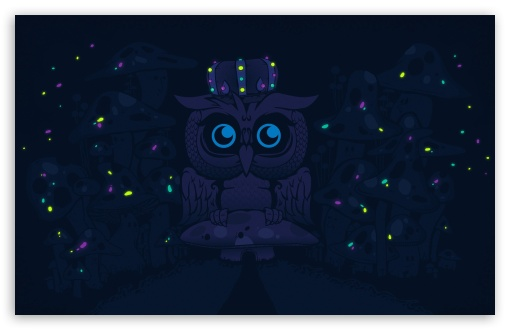 ImagineBlueOwls ❤ 4K UHD Wallpaper for Wide 16:10 5:3 Widescreen WHXGA WQXGA WUXGA WXGA WGA ; 4K UHD 16:9 Ultra High Definition 2160p 1440p 1080p 900p 720p ; Standard 4:3 5:4 3:2 Fullscreen UXGA XGA SVGA QSXGA SXGA DVGA HVGA HQVGA ( Apple PowerBook G4 iPhone 4 3G 3GS iPod Touch ) ; Tablet 1:1 ; iPad 1/2/Mini ; Mobile 4:3 5:3 3:2 16:9 5:4 - UXGA XGA SVGA WGA DVGA HVGA HQVGA ( Apple PowerBook G4 iPhone 4 3G 3GS iPod Touch ) 2160p 1440p 1080p 900p 720p QSXGA SXGA ; Dual 5:4 QSXGA SXGA ;