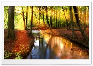 Impressive Autumn Landscape HD Wide Wallpaper for Widescreen