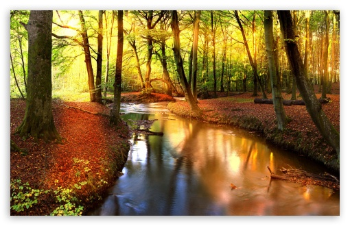Impressive Autumn Landscape ❤ 4K UHD Wallpaper for Wide 16:10 5:3 Widescreen WHXGA WQXGA WUXGA WXGA WGA ; 4K UHD 16:9 Ultra High Definition 2160p 1440p 1080p 900p 720p ; Standard 4:3 5:4 3:2 Fullscreen UXGA XGA SVGA QSXGA SXGA DVGA HVGA HQVGA ( Apple PowerBook G4 iPhone 4 3G 3GS iPod Touch ) ; Tablet 1:1 ; iPad 1/2/Mini ; Mobile 4:3 5:3 3:2 16:9 5:4 - UXGA XGA SVGA WGA DVGA HVGA HQVGA ( Apple PowerBook G4 iPhone 4 3G 3GS iPod Touch ) 2160p 1440p 1080p 900p 720p QSXGA SXGA ; Dual 16:10 5:3 16:9 4:3 5:4 WHXGA WQXGA WUXGA WXGA WGA 2160p 1440p 1080p 900p 720p UXGA XGA SVGA QSXGA SXGA ;
