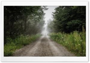 In The Fog Photography Ultra HD Wallpaper for 4K UHD Widescreen desktop, tablet & smartphone