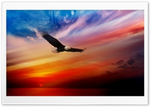 Independence Day USA Ultra HD Wallpaper for 4K UHD Widescreen desktop, tablet & smartphone