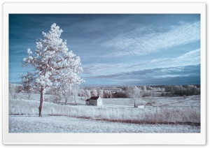 Infrared Landscape Ultra HD Wallpaper for 4K UHD Widescreen desktop, tablet & smartphone