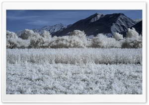Infrared Landscape Photography HD Wide Wallpaper for Widescreen