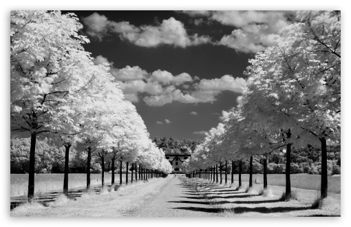 Infrared Photo HD wallpaper for Wide 16:10 5:3 Widescreen WHXGA WQXGA WUXGA WXGA WGA ; HD 16:9 High Definition WQHD QWXGA 1080p 900p 720p QHD nHD ; Standard 4:3 5:4 3:2 Fullscreen UXGA XGA SVGA QSXGA SXGA DVGA HVGA HQVGA devices ( Apple PowerBook G4 iPhone 4 3G 3GS iPod Touch ) ; Tablet 1:1 ; iPad 1/2/Mini ; Mobile 4:3 5:3 3:2 16:9 5:4 - UXGA XGA SVGA WGA DVGA HVGA HQVGA devices ( Apple PowerBook G4 iPhone 4 3G 3GS iPod Touch ) WQHD QWXGA 1080p 900p 720p QHD nHD QSXGA SXGA ; Dual 4:3 5:4 UXGA XGA SVGA QSXGA SXGA ;