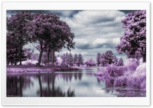 Infrared Pond HD Wide Wallpaper for Widescreen