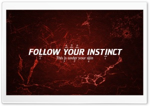 INSTINCT HD Wide Wallpaper for Widescreen