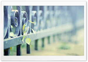 Iron Fence HD Wide Wallpaper for Widescreen