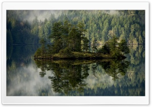Island With Pines In The Lake HD Wide Wallpaper for Widescreen