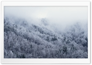 Its Cold Outside HD Wide Wallpaper for Widescreen