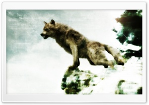 Jacob Black - Werewolf Form HD Wide Wallpaper for Widescreen