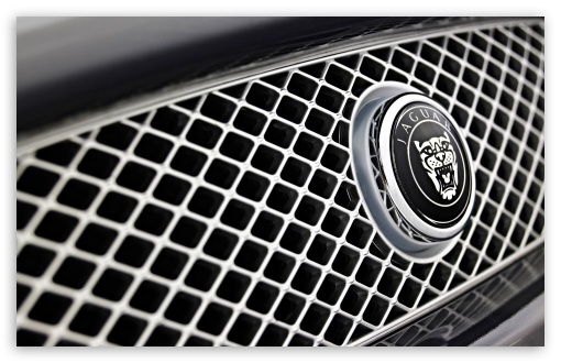 Jaguar Badge HD wallpaper for Wide 16:10 5:3 Widescreen WHXGA WQXGA WUXGA WXGA WGA ; HD 16:9 High Definition WQHD QWXGA 1080p 900p 720p QHD nHD ; Standard 4:3 5:4 3:2 Fullscreen UXGA XGA SVGA QSXGA SXGA DVGA HVGA HQVGA devices ( Apple PowerBook G4 iPhone 4 3G 3GS iPod Touch ) ; iPad 1/2/Mini ; Mobile 4:3 5:3 3:2 16:9 5:4 - UXGA XGA SVGA WGA DVGA HVGA HQVGA devices ( Apple PowerBook G4 iPhone 4 3G 3GS iPod Touch ) WQHD QWXGA 1080p 900p 720p QHD nHD QSXGA SXGA ;