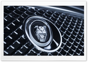 Jaguar Badge 1 HD Wide Wallpaper for Widescreen