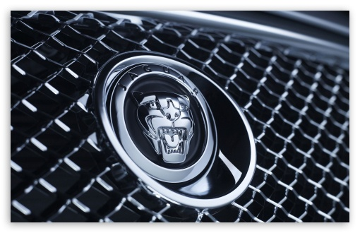 Jaguar Badge 1 ❤ 4K UHD Wallpaper for Wide 16:10 5:3 Widescreen WHXGA WQXGA WUXGA WXGA WGA ; 4K UHD 16:9 Ultra High Definition 2160p 1440p 1080p 900p 720p ; Standard 3:2 Fullscreen DVGA HVGA HQVGA ( Apple PowerBook G4 iPhone 4 3G 3GS iPod Touch ) ; Mobile 5:3 3:2 16:9 - WGA DVGA HVGA HQVGA ( Apple PowerBook G4 iPhone 4 3G 3GS iPod Touch ) 2160p 1440p 1080p 900p 720p ;
