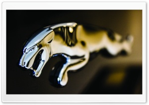 Jaguar Logo Close-up HD Wide Wallpaper for Widescreen