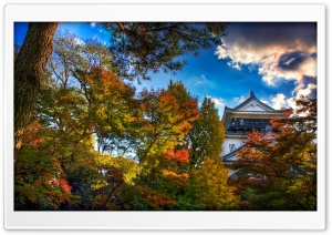 Japanese Castle, Autumn HD Wide Wallpaper for 4K UHD Widescreen desktop & smartphone