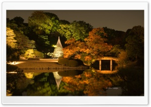 Japanese Garden at Night HD Wide Wallpaper for 4K UHD Widescreen desktop & smartphone