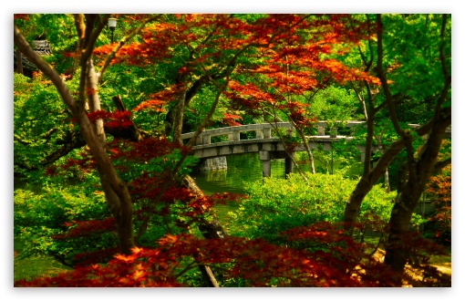 Japanese Garden (Kyoto) HD wallpaper for Standard 4:3 5:4 Fullscreen UXGA XGA SVGA QSXGA SXGA ; Wide 16:10 5:3 Widescreen WHXGA WQXGA WUXGA WXGA WGA ; HD 16:9 High Definition WQHD QWXGA 1080p 900p 720p QHD nHD ; Other 3:2 DVGA HVGA HQVGA devices ( Apple PowerBook G4 iPhone 4 3G 3GS iPod Touch ) ; Mobile VGA WVGA iPhone iPad PSP Phone - VGA QVGA Smartphone ( PocketPC GPS iPod Zune BlackBerry HTC Samsung LG Nokia Eten Asus ) WVGA WQVGA Smartphone ( HTC Samsung Sony Ericsson LG Vertu MIO ) HVGA Smartphone ( Apple iPhone iPod BlackBerry HTC Samsung Nokia ) Sony PSP Zune HD Zen ; Tablet 2 Android 3 DVGA HVGA HQVGA devices ( Apple PowerBook G4 iPhone 4 3G 3GS iPod Touch ) ; Dual 4:3 5:4 16:10 5:3 UXGA XGA SVGA QSXGA SXGA WHXGA WQXGA WUXGA WXGA WGA ;