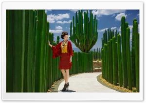 Japanese Model Female Fashion Ultra HD Wallpaper for 4K UHD Widescreen desktop, tablet & smartphone