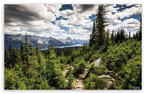 Jasper National Park, Canada ❤ 4K UHD Wallpaper for Wide 16:10 5:3 Widescreen WHXGA WQXGA WUXGA WXGA WGA ; UltraWide 21:9 24:10 ; 4K UHD 16:9 Ultra High Definition 2160p 1440p 1080p 900p 720p ; UHD 16:9 2160p 1440p 1080p 900p 720p ; Standard 4:3 5:4 3:2 Fullscreen UXGA XGA SVGA QSXGA SXGA DVGA HVGA HQVGA ( Apple PowerBook G4 iPhone 4 3G 3GS iPod Touch ) ; Tablet 1:1 ; iPad 1/2/Mini ; Mobile 4:3 5:3 3:2 16:9 5:4 - UXGA XGA SVGA WGA DVGA HVGA HQVGA ( Apple PowerBook G4 iPhone 4 3G 3GS iPod Touch ) 2160p 1440p 1080p 900p 720p QSXGA SXGA ;