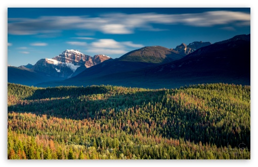Jasper National Park, Canada, Landscape UltraHD Wallpaper for Wide 16:10 5:3 Widescreen WHXGA WQXGA WUXGA WXGA WGA ; UltraWide 21:9 24:10 ; 8K UHD TV 16:9 Ultra High Definition 2160p 1440p 1080p 900p 720p ; UHD 16:9 2160p 1440p 1080p 900p 720p ; Mobile 5:3 16:9 - WGA 2160p 1440p 1080p 900p 720p ;