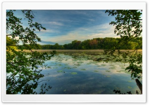 Jensen Lake, Lebanon Hills Park, Eagan, Minnesota HD Wide Wallpaper for 4K UHD Widescreen desktop & smartphone
