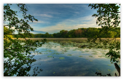 Jensen Lake, Lebanon Hills Park, Eagan, Minnesota ❤ 4K UHD Wallpaper for Wide 16:10 5:3 Widescreen WHXGA WQXGA WUXGA WXGA WGA ; 4K UHD 16:9 Ultra High Definition 2160p 1440p 1080p 900p 720p ; Standard 4:3 5:4 3:2 Fullscreen UXGA XGA SVGA QSXGA SXGA DVGA HVGA HQVGA ( Apple PowerBook G4 iPhone 4 3G 3GS iPod Touch ) ; Tablet 1:1 ; iPad 1/2/Mini ; Mobile 4:3 5:3 3:2 16:9 5:4 - UXGA XGA SVGA WGA DVGA HVGA HQVGA ( Apple PowerBook G4 iPhone 4 3G 3GS iPod Touch ) 2160p 1440p 1080p 900p 720p QSXGA SXGA ; Dual 16:10 5:3 16:9 4:3 5:4 WHXGA WQXGA WUXGA WXGA WGA 2160p 1440p 1080p 900p 720p UXGA XGA SVGA QSXGA SXGA ;