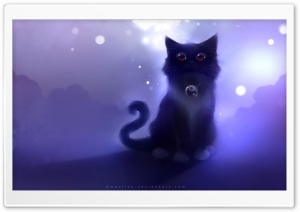 Karma Cat HD Wide Wallpaper for Widescreen