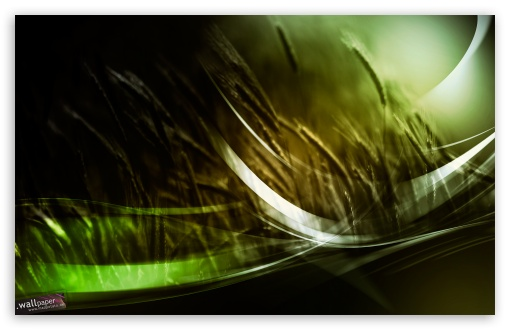 Keitum HD wallpaper for Wide 16:10 Widescreen WHXGA WQXGA WUXGA WXGA ; Standard 4:3 Fullscreen UXGA XGA SVGA ; iPad 1/2/Mini ; Mobile 4:3 - UXGA XGA SVGA ; Dual 16:10 5:3 WHXGA WQXGA WUXGA WXGA WGA ;