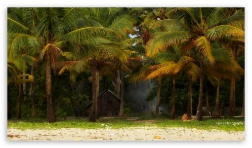 kerala beach 4k hd desktop wallpaper for 4k ultra hd tv
