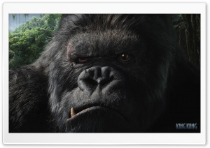 King Kong 2 Ultra HD Wallpaper for 4K UHD Widescreen desktop, tablet & smartphone