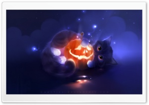 Kitty Playing with a Pumpkin HD Wide Wallpaper for 4K UHD Widescreen desktop & smartphone