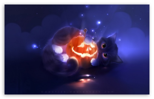 Kitty Playing With A Pumpkin HD wallpaper for Wide 16:10 5:3 Widescreen WHXGA WQXGA WUXGA WXGA WGA ; HD 16:9 High Definition WQHD QWXGA 1080p 900p 720p QHD nHD ; Standard 4:3 5:4 3:2 Fullscreen UXGA XGA SVGA QSXGA SXGA DVGA HVGA HQVGA devices ( Apple PowerBook G4 iPhone 4 3G 3GS iPod Touch ) ; Tablet 1:1 ; iPad 1/2/Mini ; Mobile 4:3 5:3 3:2 16:9 5:4 - UXGA XGA SVGA WGA DVGA HVGA HQVGA devices ( Apple PowerBook G4 iPhone 4 3G 3GS iPod Touch ) WQHD QWXGA 1080p 900p 720p QHD nHD QSXGA SXGA ;