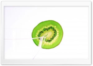 Kiwi Fruit Slice HD Wide Wallpaper for Widescreen