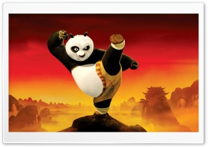 Kung Fu Panda 2 2011 HD Wide Wallpaper for Widescreen