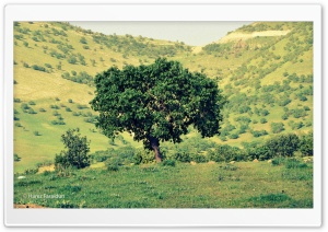 Kurdistan-Nature HD Wide Wallpaper for Widescreen