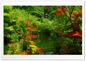 Kyoto Garden, Japan HD Wide Wallpaper for 4K UHD Widescreen desktop & smartphone