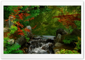 Kyoto Garden, Japan HD Wide Wallpaper for Widescreen