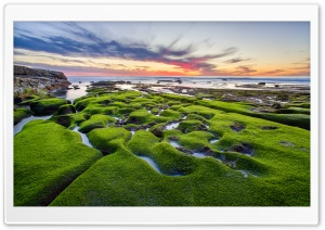 La Jolla Green Shore HD Wide Wallpaper for 4K UHD Widescreen desktop & smartphone