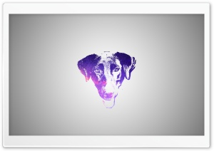 Labrador Retriever Manipulation HD Wide Wallpaper for 4K UHD Widescreen desktop & smartphone