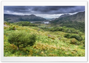 Ladies View, Killarney National Park in Ireland HD Wide Wallpaper for 4K UHD Widescreen desktop & smartphone