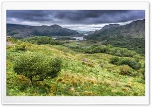 Ladies View, Killarney National Park in Ireland Ultra HD Wallpaper for 4K UHD Widescreen desktop, tablet & smartphone