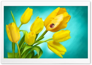 Ladybird and Yellow Tulips in Vase HD Wide Wallpaper for 4K UHD Widescreen desktop & smartphone