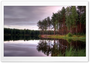Lake And Forest HD Wide Wallpaper for Widescreen
