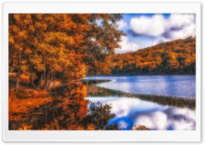 Lake, Forest, Autumn HD Wide Wallpaper for 4K UHD Widescreen desktop & smartphone