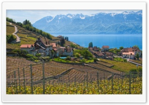 Lake Geneva, Switzerland HD Wide Wallpaper for Widescreen