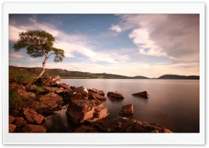 Lake In The Wild HD Wide Wallpaper for Widescreen