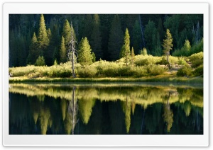 Lake Reflections HD Wide Wallpaper for Widescreen