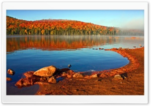 Lake Shore, Autumn HD Wide Wallpaper for Widescreen